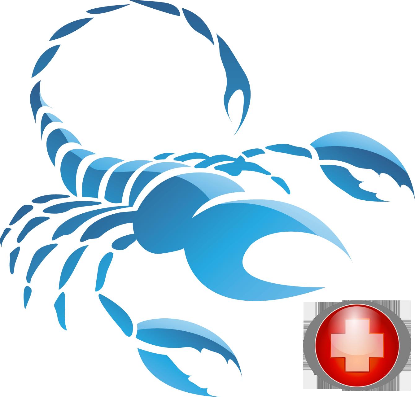 Скорпион здоровье