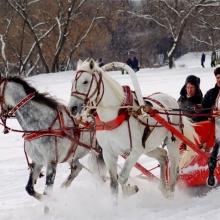 Куда съездить с ребенком в России?