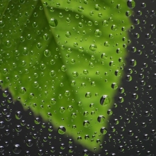 Как справиться с повышенной влажностью в квартире?